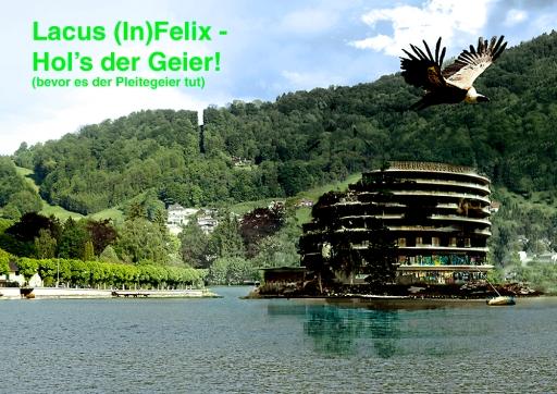 lacus_felix_bild_geier