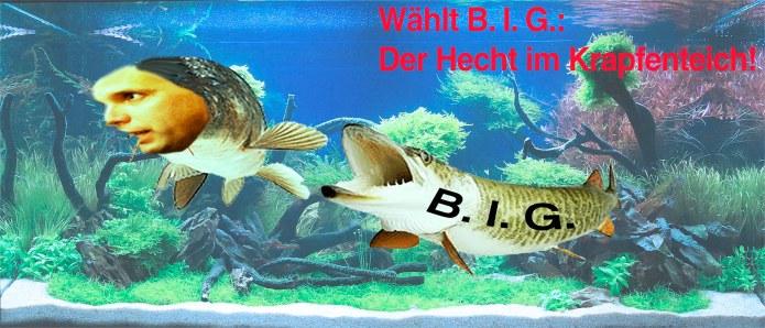 krapf_hecht_05_end